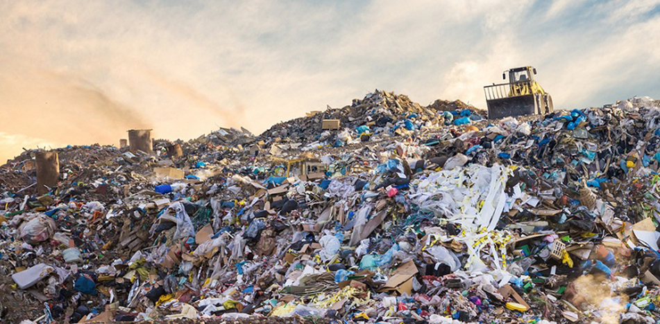 3 ways to stop food waste from ending up the landfill